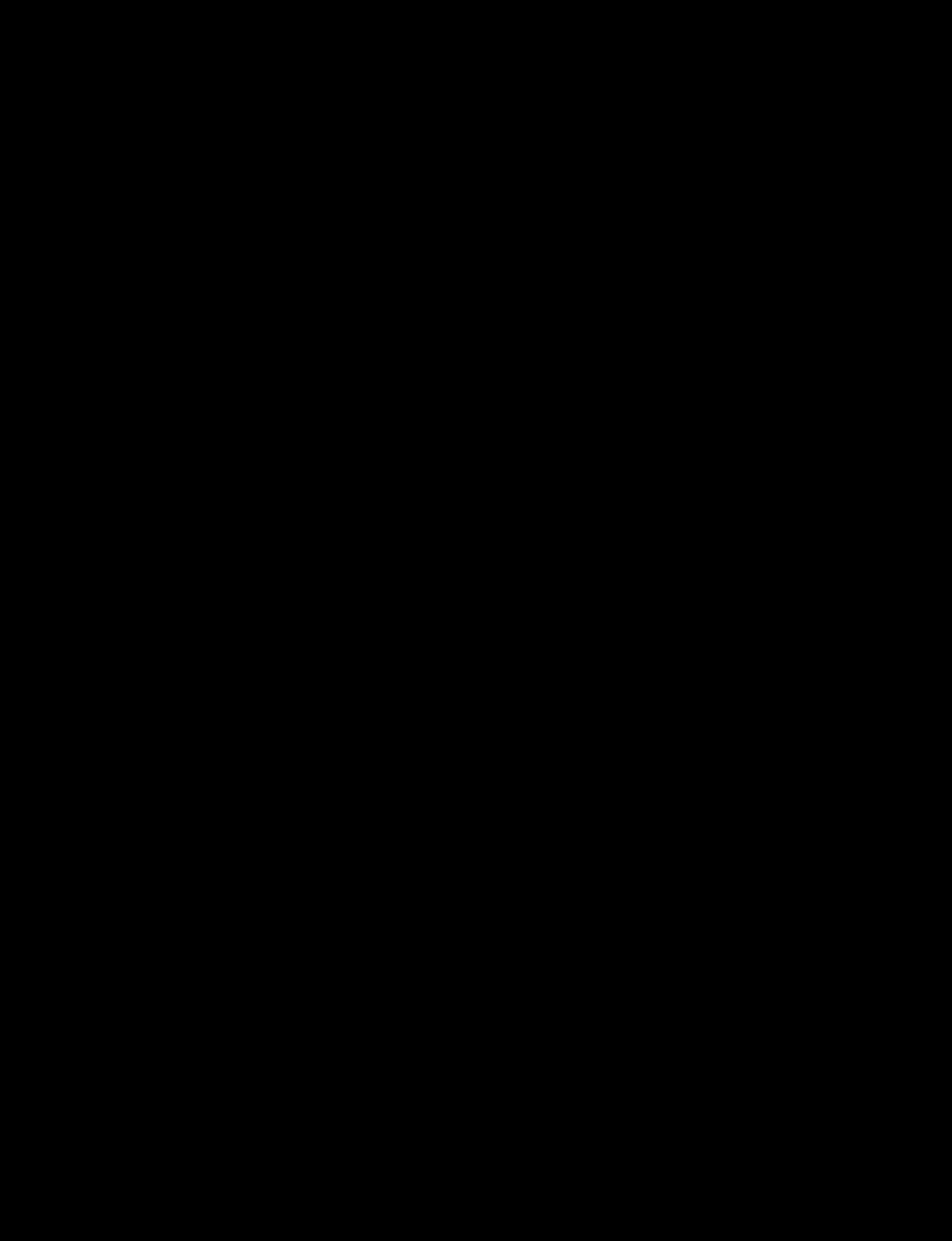 A braided chignon